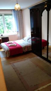 Apartment Sarajevo Bistrik - фото 2