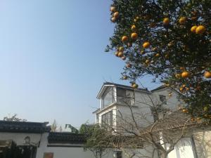 Pure-Land Villa, Ubytování v soukromí  Suzhou - big - 26