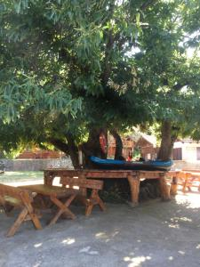 B&B Skadar Lake Murici, Отели типа «постель и завтрак»  Бар - big - 22