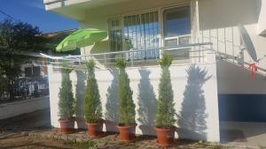 Akçay Summer House
