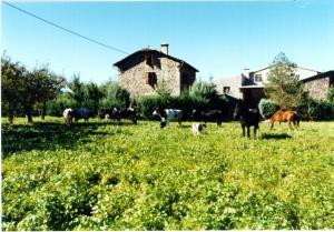 Casa Rural La Vall del Cadi