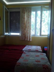 Apartment SV