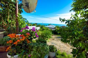 Гостевой дом В гостях у Сусанны - фото 19