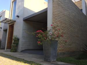 Madre Natura, Apartments  Asuncion - big - 54