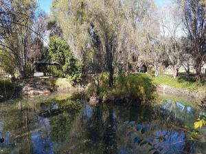 Elands River Lodge, Lodges  Machadodorp - big - 1