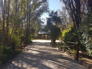 Elands River Lodge, Lodges  Machadodorp - big - 51