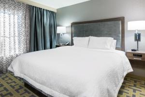 Hampton Inn & Suites Tampa Airport Avion Park Westshore, Отели  Тампа - big - 3