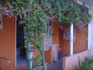 Casa aconchegante Ubatuba, Holiday homes  Ubatuba - big - 19