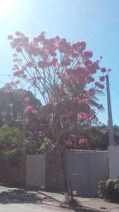 Casa aconchegante Ubatuba, Holiday homes  Ubatuba - big - 18