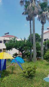Chagwido White Pension, Holiday homes  Jeju - big - 8