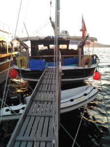 Liela Yatcilik (Yacht), Botely  Ayvalık - big - 4