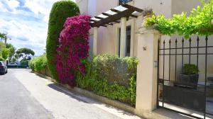 Residence les Lauriers, Appartamenti  Nizza - big - 19