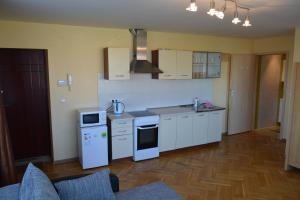 Andriaus Apartamentai, Apartments  Šiauliai - big - 50