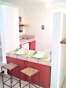 Suites Rusa, Aparthotels  San Luis Potosí - big - 11