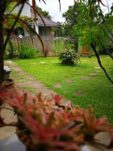 obrázek - Baan Bua Guest House