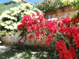 Adubai Hostel, Hostelek  Alto Paraíso de Goiás - big - 33