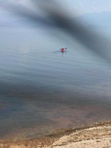B&B Skadar Lake Murici, Отели типа «постель и завтрак»  Бар - big - 21