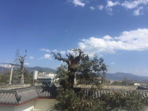obrázek - Lijiang Lanlianhua Hostel
