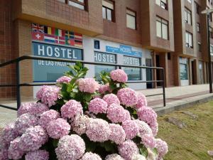 obrázek - Hostel de las Facultades