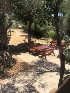 B&B Skadar Lake Murici, Bed and breakfasts  Bar - big - 11