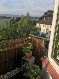 Annys Sonnendeck, Apartmány  Kassel - big - 10