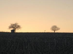La Roulotte du Granit Doré, Ferienhäuser  Jullié - big - 18
