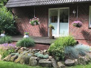 Barock Hengst Hof