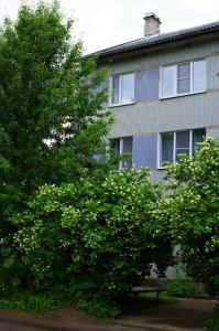Апартаменты Пушкинские горы Комфорт - фото 8