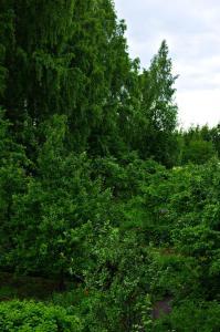 Апартаменты Пушкинские горы Комфорт - фото 9