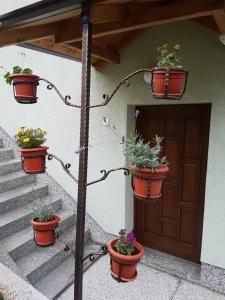 Guest house Dinka - фото 24