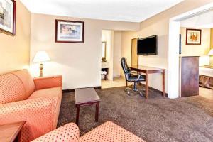 Wyndham Garden Detroit Metro Airport, Hotel  Romulus - big - 8