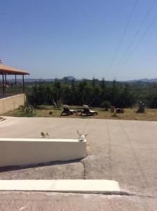 Olympia Garden Home, Villas  Lagópodhon - big - 24