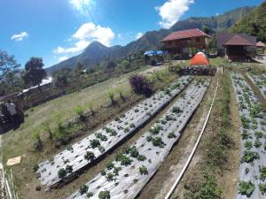 Bale Sembahulun Cottages & Tend
