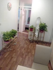 Apartment Alipašino - фото 3
