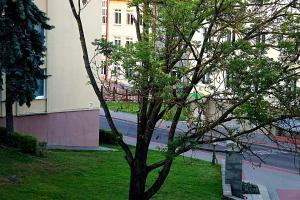 Apartament Center Grodno, Apartmány  Grodno - big - 8