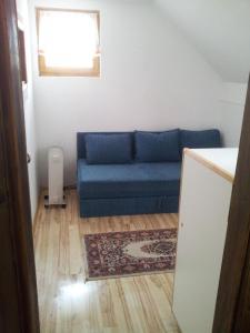 Tara Sokolarica Apartment