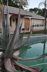 Clan Court Guesthouse, Bed and Breakfasts  Clanwilliam - big - 20