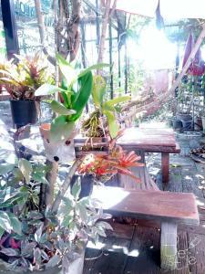 102 Residence, Hotely  San Kamphaeng - big - 132