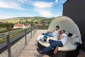 Weinlodge Siedler, Bed & Breakfast  Mautern - big - 11