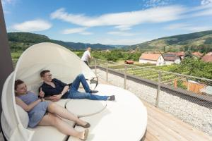 Weinlodge Siedler, Bed & Breakfast  Mautern - big - 35