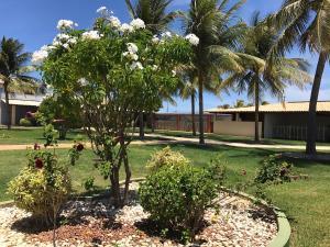 Casa Luamar, Holiday homes  Estância - big - 5