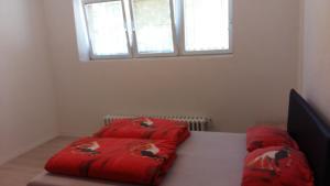 Grlica Apartments - фото 10