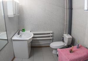 Guest House on ulitsa Pobedy 32, Дома для отпуска  Ramon' - big - 4