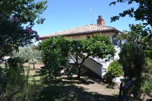 La Balocca, Bed & Breakfasts  Montefiascone - big - 22