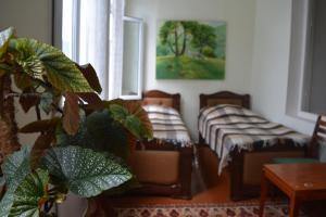Sweet Home, Locande  Dilijan - big - 53
