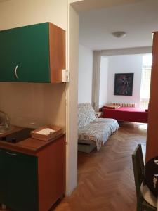 Apartments Andjela, Апартаменты  Нови-Сад - big - 11