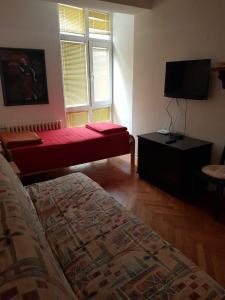 Apartments Andjela, Апартаменты  Нови-Сад - big - 12