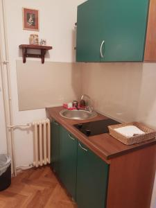 Apartments Andjela, Апартаменты  Нови-Сад - big - 13