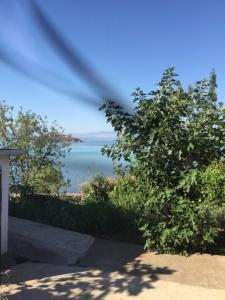 B&B Skadar Lake Murici, Отели типа «постель и завтрак»  Бар - big - 14