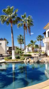 San Jeronimo, Holiday homes  Cabo San Lucas - big - 7